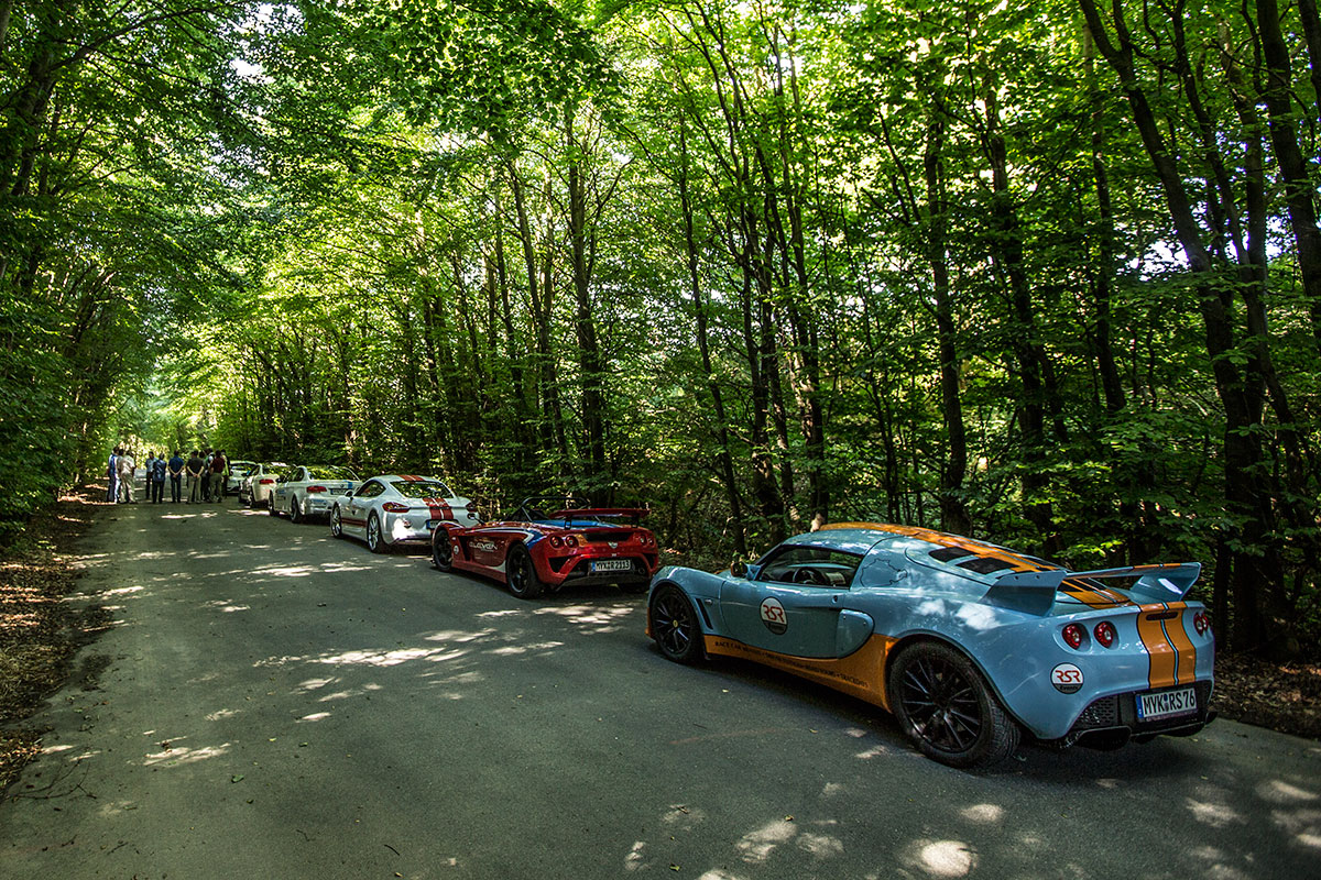 Cars on the forest road